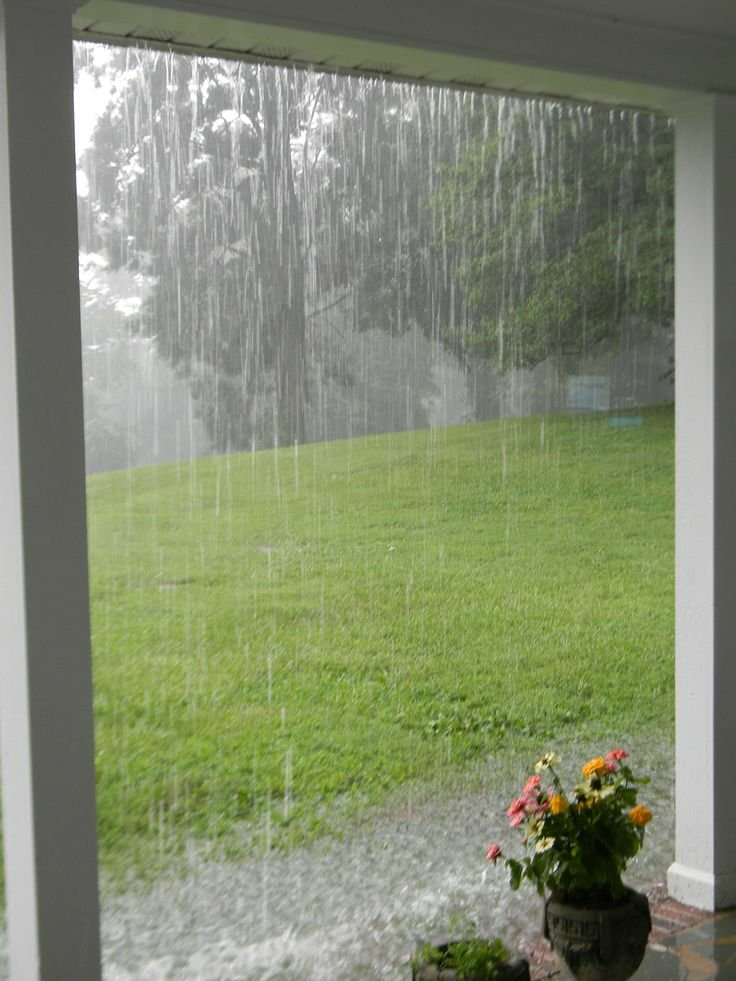Relaxing to the Sounds of Rain and Music in the Summer