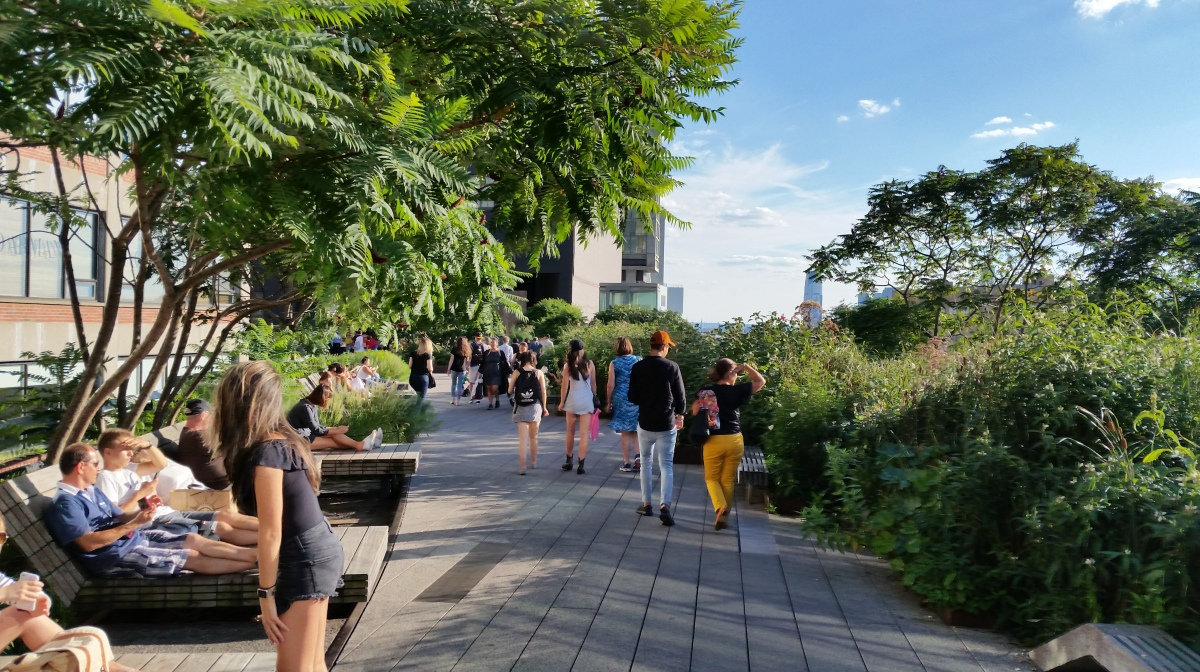 Elevate Yourself to an Urban BotanicalExperience