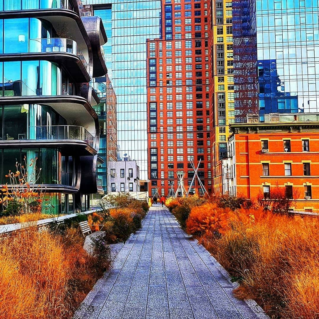 The Beauty of the High Line in Autumn